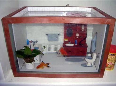 Un aquarium salle de bain pour poisson for Acoiriome de poisson