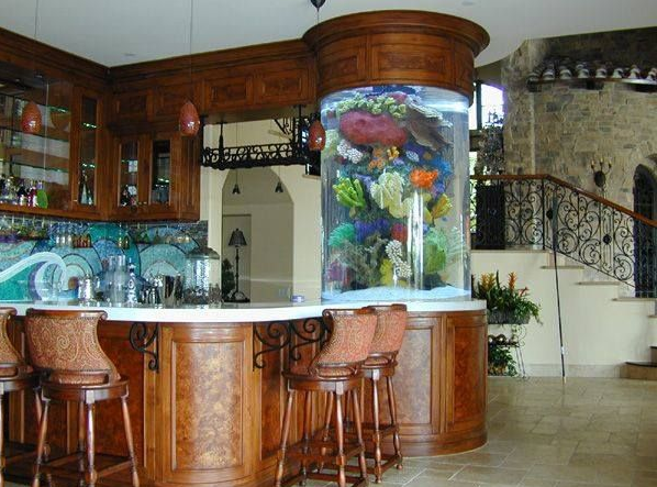 superbe aquarium colonne de bar. Black Bedroom Furniture Sets. Home Design Ideas