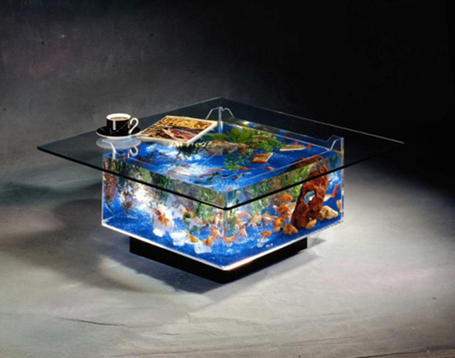 Un bel aquarium en table basse...\