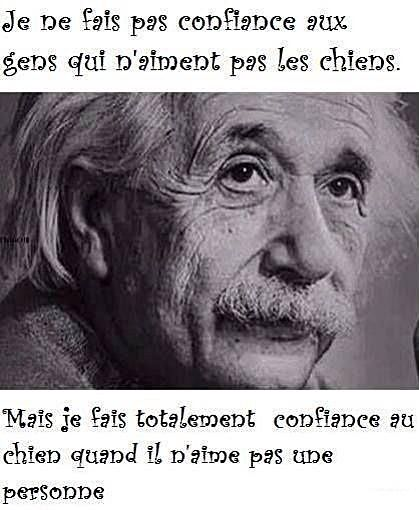 citation anniversaire einstein