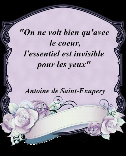 citation-a​ntoine-de-​st-exupery