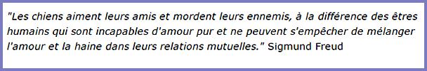 Citaten Freud : Citations page