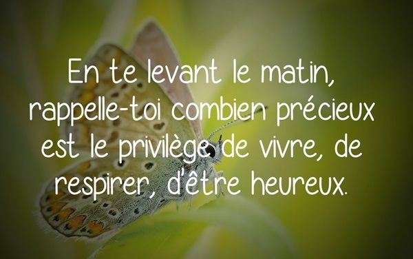 citation-matin