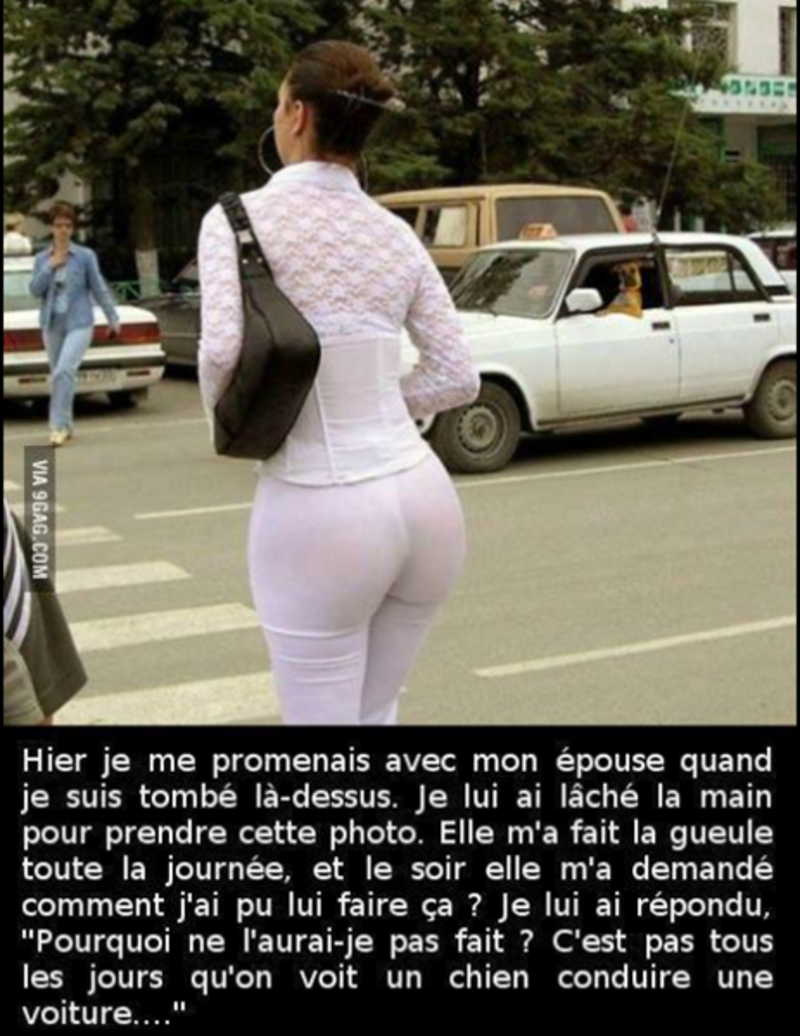 blague drole voiture