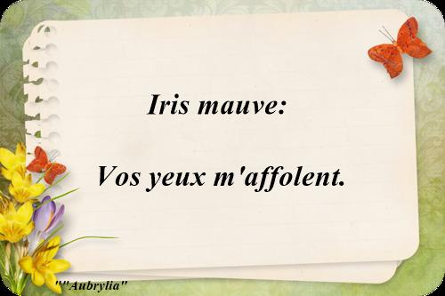 Le langage des fleurs iris mauve - Langage des fleurs iris ...