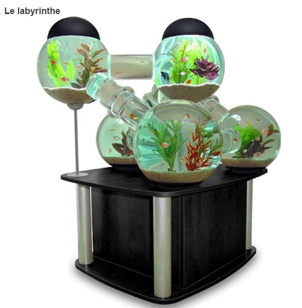Aquariums page 2 for Pesci per laghetto prezzi